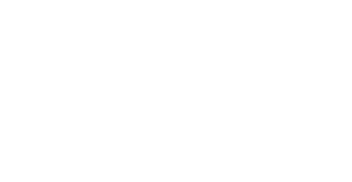Halte à la N - Logo
